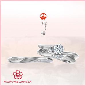 月桜(セットリング)