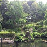 日本庭園。ぐるっと一周できます。