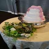 イミテーションケーキ