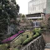 式場からの日本庭園の眺め