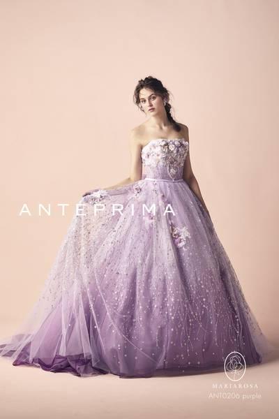 4枚目 ANT0206 purple