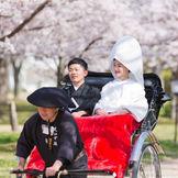 桜の名所 西の丸庭園。ソメイヨシノを中心に300本の桜が咲き誇る。