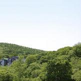 藻岩の原生林の中に神聖な誓いの場として 存在する。