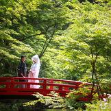 遠州一宮小國神社の結婚式