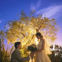 挙式前にふたりだけで過ごす時間。シンボルツリーの前でサプライズプロポーズ