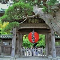 あじさいで有名な長谷寺は、一年中季節の花が楽しめ、別名花寺とも呼ばれるお寺。こちらは徒歩3分の距離。