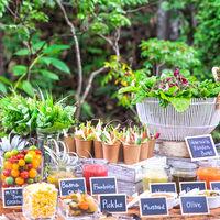 有機野菜をふんだんに使用した菜園ビュッフェは女性ゲストに人気の演出