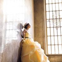 【ドレス】