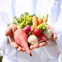 ミネラル豊富な【葉山鎌倉野菜】でゲストの皆様が驚くような彩りを・・・