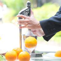 ウエルカムパーティ ひとつひとつ手絞りで作る生絞りオレンジジュース♪
