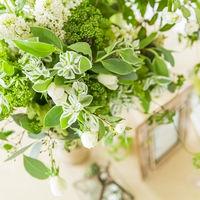 グリーンのお花がトレンド♪