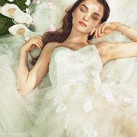 花嫁に大人気のドレスショップ「THE TREAT DRESSING」