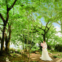緑を背景に真っ白いドレスが映える。フォトジェニックな美しいドレス姿をたくさん残そう
