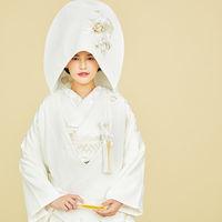 トリートのセレクトした伝統的な美しい着物