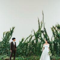 白を基調とした外壁に自然の緑を表す植物を