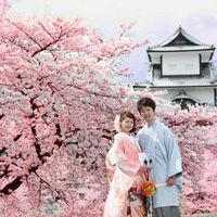 金沢城公園は当館の目の前。 桜の前撮りは定番の人気スポット