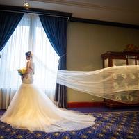 ロイヤルブルーのカーペットにウエディングドレスが映える