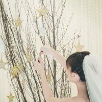 人前式 テーマは「星に願いを」☆星形の証明書を木に飾ります♪