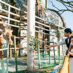 動物園 しーちゃんの前撮り ロケーションフォト 熊本 ウェディングドレス