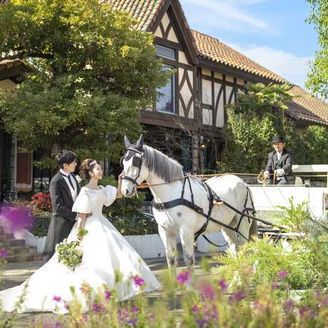 愛媛県初の白馬の馬車演出