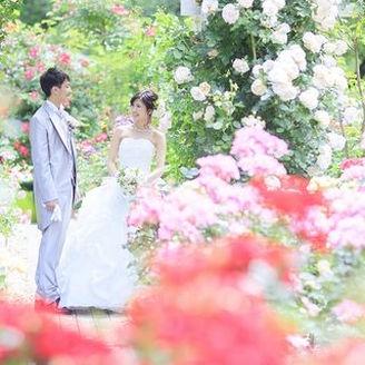 彩り綺麗な愛を象徴するバラに包まれ、大切な日を色鮮やかで幸福な記憶へと変えてゆく、5000坪の広大な敷地に広がる甘い香りと季節の華やぎを