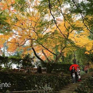 紅葉の時期の筑波山神社はロケーションも最高です!