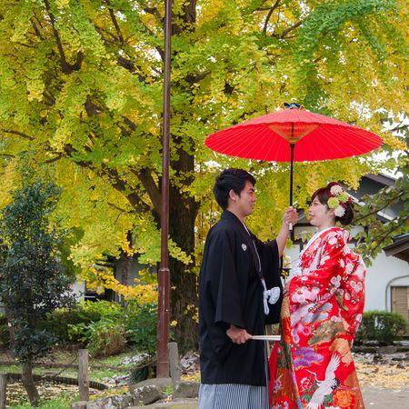 和装 色打掛け 紋付袴 ロケーション 神社 番傘 木