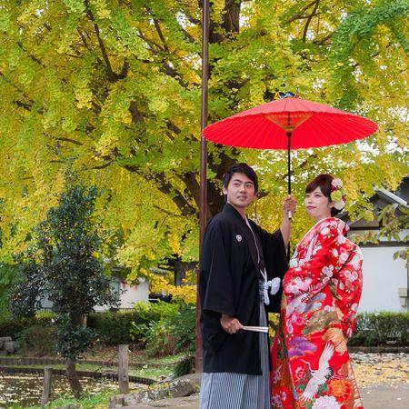 和装 色打掛け 紋付袴 ロケーション 神社 木 番傘
