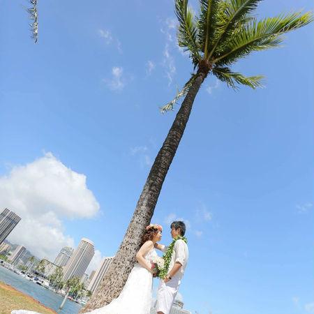 ハワイ ビーチ 海 空 ドレス ウェディングドレス 木 花かんむり
