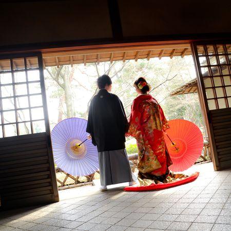色打掛 番傘 和装 ロケーション 洋髪 後ろ姿 紋付袴