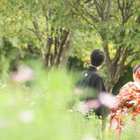 和装 色打掛 ロケーション 庭園 紅葉 バックショット