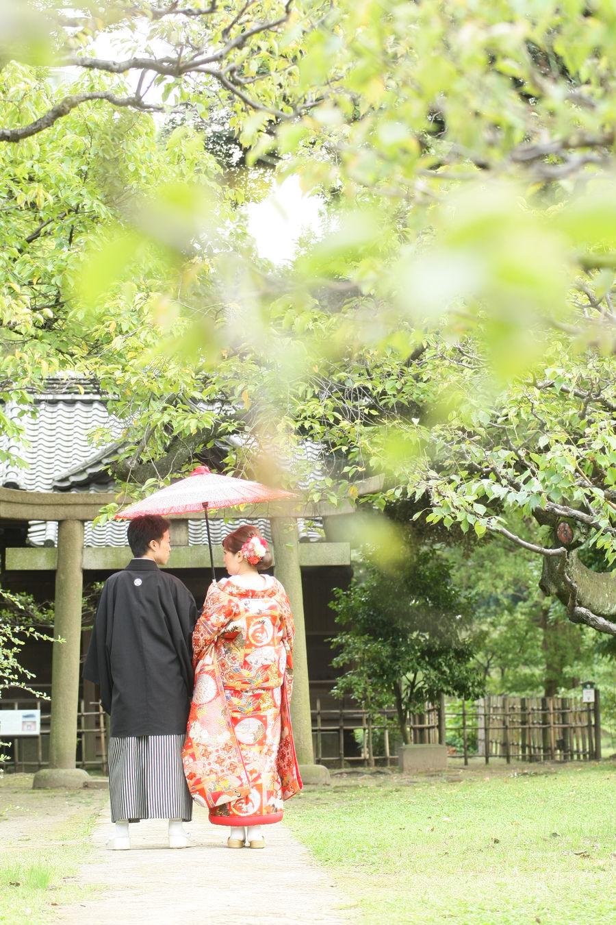 和装 色打掛 ロケーション 庭園 バックショット 番傘 黒紋付袴 紅葉