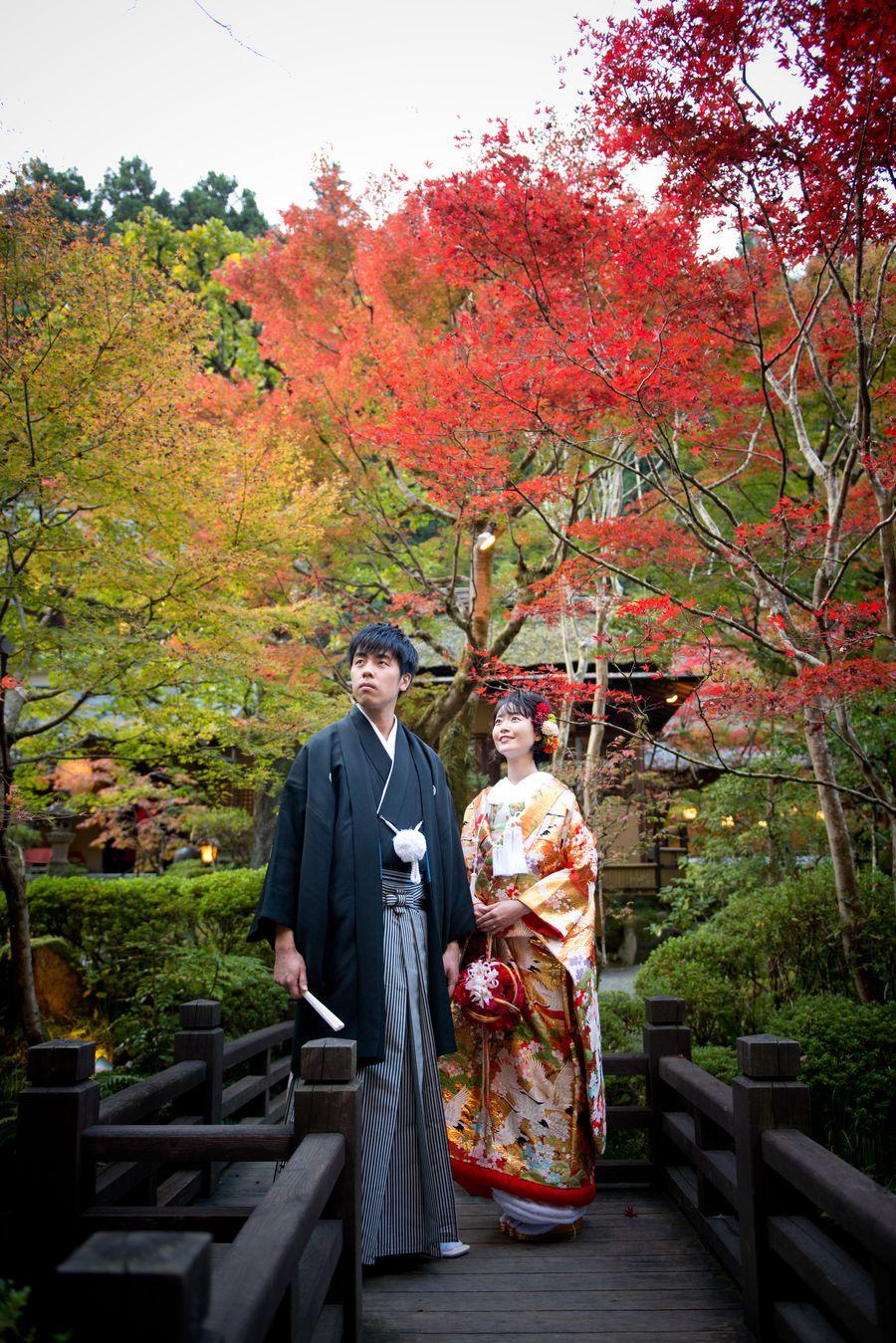 和装 ロケーション 色打掛 黒紋付袴 紅葉 庭園