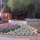 お庭がとても綺麗でした。