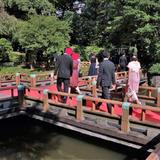 庭参進ではこの橋を歩きます。