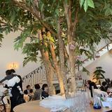 デザートビュッフェの会場にある木