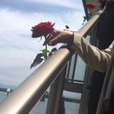中庭に続く階段にバラの演出