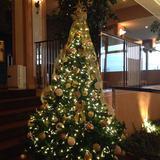 2階はゴールドのクリスマスツリーでした