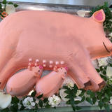 豚ちゃん授乳ケーキ。お乳がついてる!