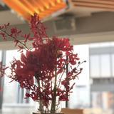 会場は和装に合わせて赤の花にしました