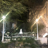 中庭は11月末からクリスマス仕様