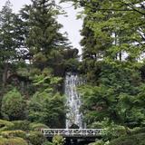 場内中庭の滝