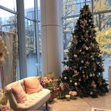 11月見学でクリスマスツリーがありました