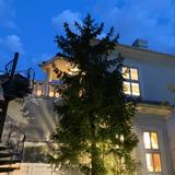 夜のレイン邸