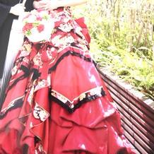 和柄ドレスと紋付き