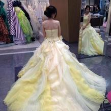 淡い色合いのドレスです