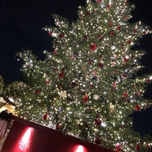 クリスマスツリーはインスタ映え
