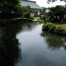 敷地内の池