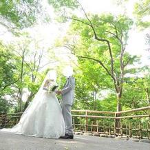 椿山荘ならではの庭園。