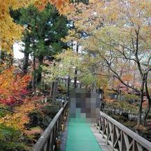紅葉の時季の庭園9